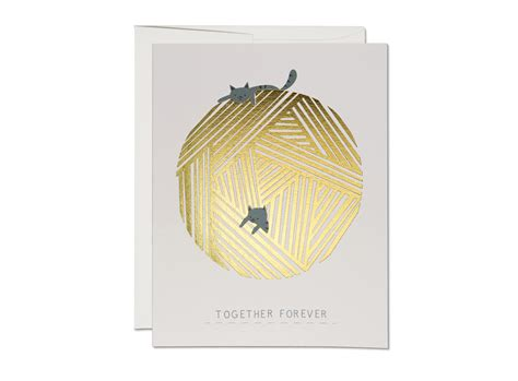 String Cards - string cats cap cards