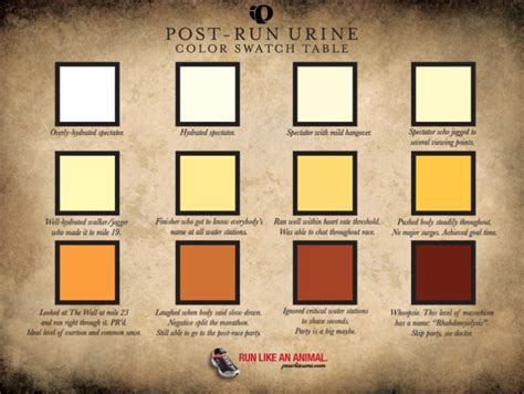 coffee colored urine golden yellow urine images frompo 1