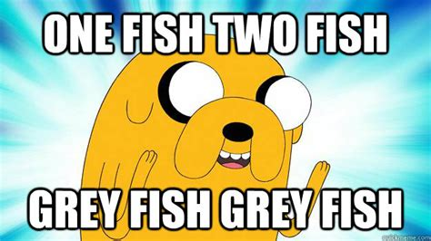 Jake The Dog Meme - one fish two fish grey fish grey fish jake the dog