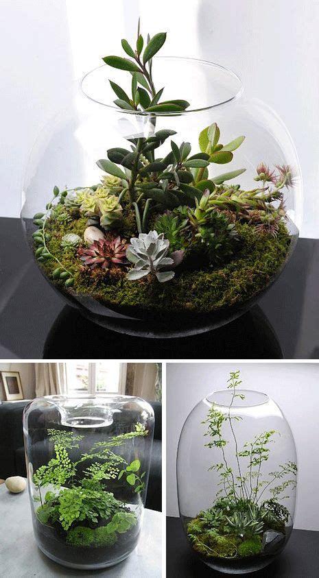 indoor terrarium rooms contours landscapes