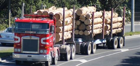 Records New Zealand New Zealand Softwood Log Exports Reach New Records For 2017
