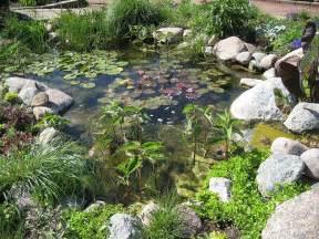 how to build a wildlife garden pond expert how