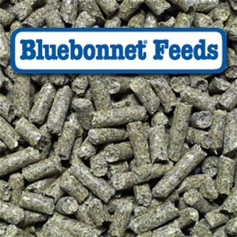 bluebonnet® equilene complete pelleted horse feed | powell
