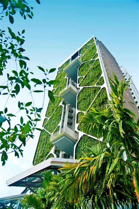 green home building and sustainable architecture eco yoga 25 best ideas about green building on pinterest