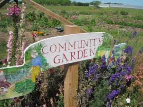 help a community garden rebuild the alliance of