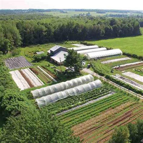 1 acre homestead layout garden ideas gardens garden planning and vegetables market gardening earth news
