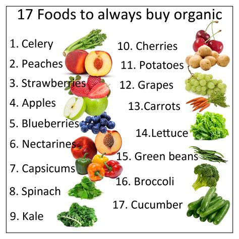 organic food top 10 reasons to eat organic foods care and living สอนทำคร ม