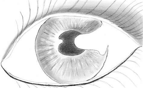 facile it banche dessin facile noir et blanc