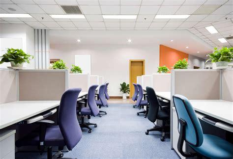 awe office plants interior design ideas   damn