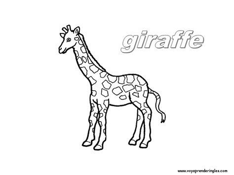 imagenes de jirafas en ingles dibujos para colorear los tres cerditos car interior design