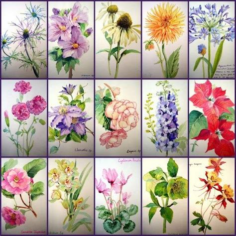 watercolor garden tutorial 42 best awesome garden mazes images on pinterest