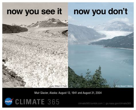 Now You See It Now You Dont The Invisible Handbag From Cocco by Nasa Photo Of Muir Glacier Now You See It 1941 Now