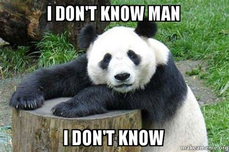 i don t know man i don t know confession panda make a meme