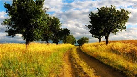 country buffets country road wallpaper 7129 1920x1080 px high