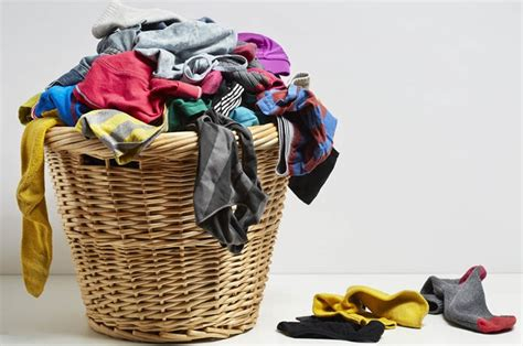 Clothes Shrinking In Dryer Laundry Tips To Your Advantage Avoid Tossing These