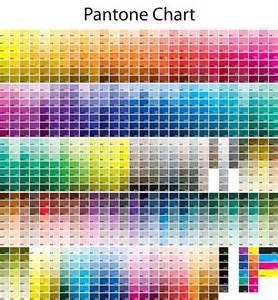 pantone palette come scegliere e generare una palette di colori