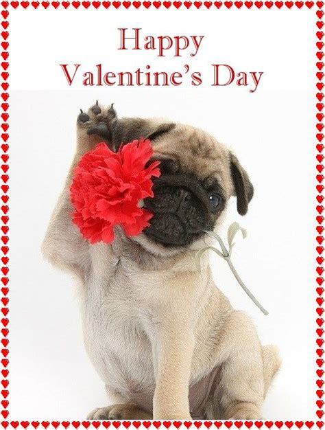 pug valentines card pug pug cards valentines pug and chang e 3