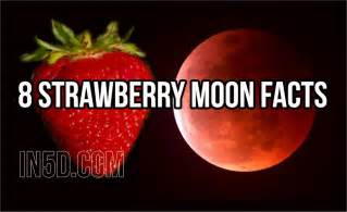 what is a strawberry moon 8 strawberry moon facts in5d esoteric metaphysical and spiritual database in5d esoteric