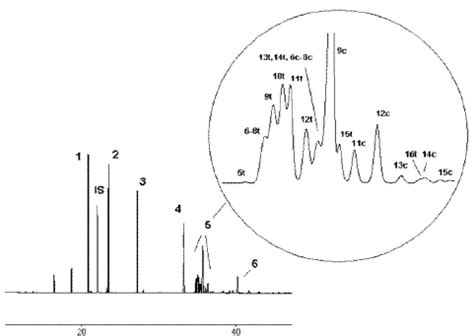 s. fame chromatogram of chocolate biscuit fat by means of