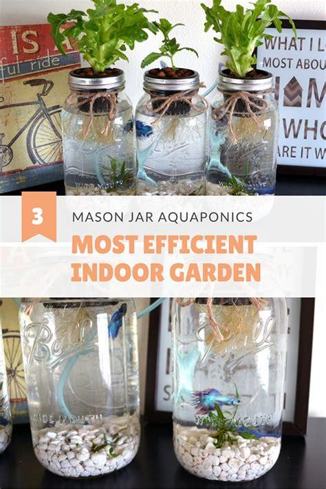 hydroponics saves    water  soil gardening