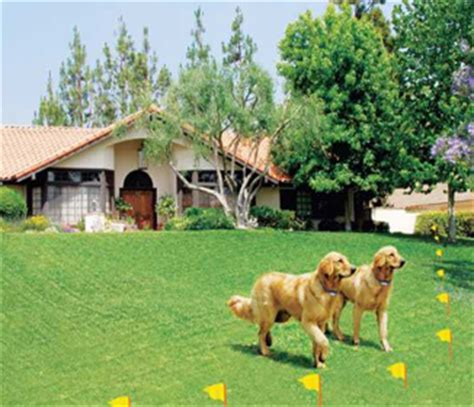 electric fences for dogs electric fence installation for dogs electric wiring diagram and circuit schematic