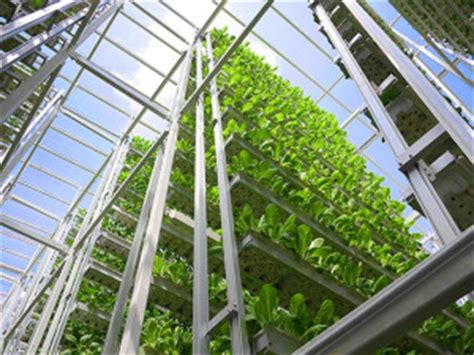 Vertical Farming   Breathing Highrises