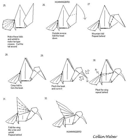 Origami Hummingbird Diagrams - hummingbird origami plan 4 collin weber