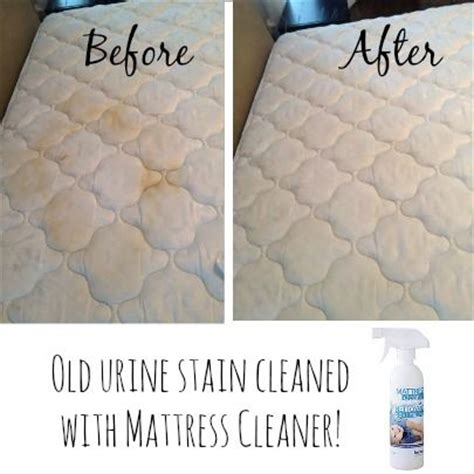 1000 ideas about clean mattress stains on