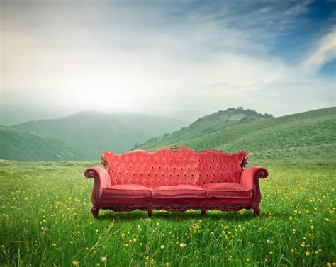psychotherapy couch psychoanalysis an adventure in love psyched in san