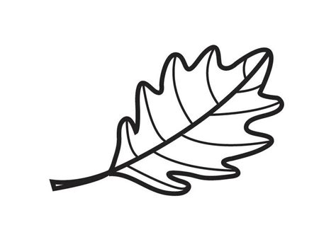 coloring pages oak leaf coloring page oak leaf img 18355 cliparts co