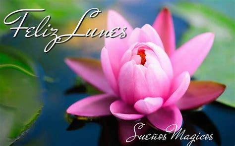 imagenes feliz lunes con amor im 225 genes de feliz lunes con frases positivas