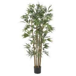 Palm Tree Vase 4 Foot Multi Bambusa Bamboo Tree Potted 5280 Nearly