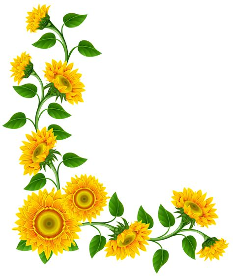 sunflower clipart sunflower border decoration png clipart image this