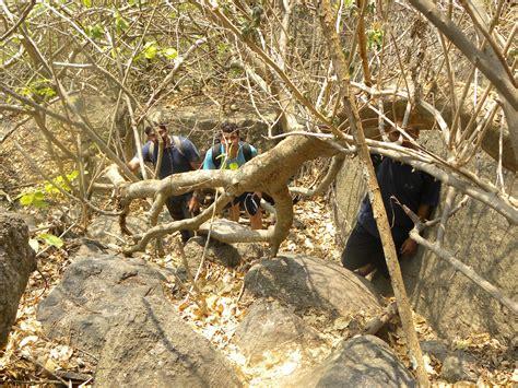 Tiger Eye Mantap stones and flowers savandurga the fort of deaths