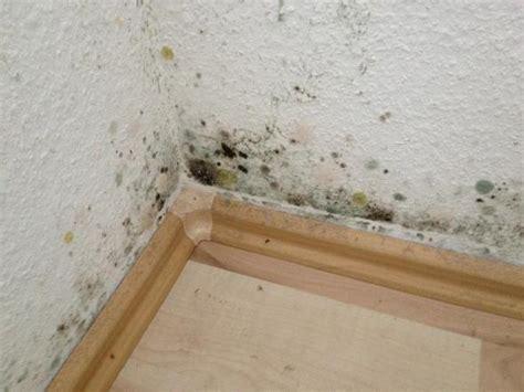 schimmelbefall im schlafzimmer energieberatung hochfranken schimmelberatung