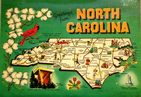 game design schools in texas greetings from north carolina map postcard back text