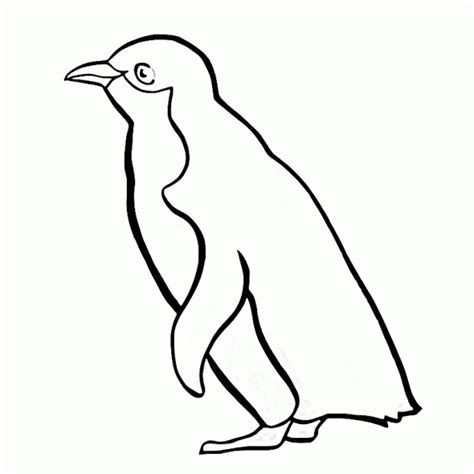 coloring pages for penguins penguin coloring pages