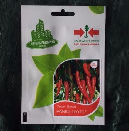Benih Cabai Merah Besar benih cabai panex 100 f1 50 biji panah merah bibitbunga