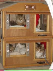 Outdoor Cat Shelter Ideas » Home Design 2017
