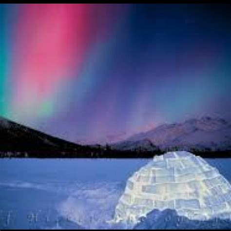 where can i go to see the northern lights 14 best images about aurora borealis on pinterest