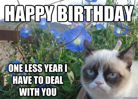 Grumpy Cat Meme Happy Birthday - happy birthday one less year i have to deal with you