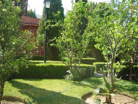 jardin con arboles dise 241 os arquitect 243 nicos mimasku