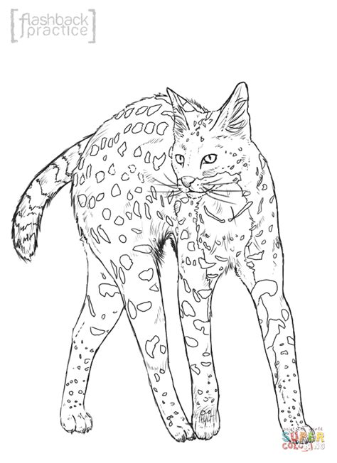 coloring pages of wild cats wildcat coloring pages coloring home