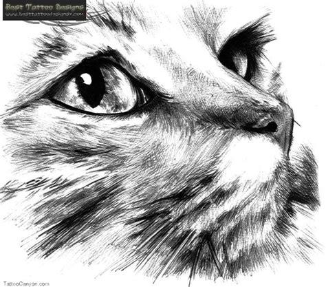 cat face tattoo designs best 25 cat tattoos ideas on on