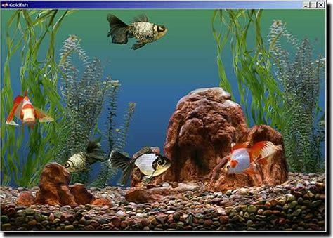 themes for windows 7 aquarium goldfish aquarium download