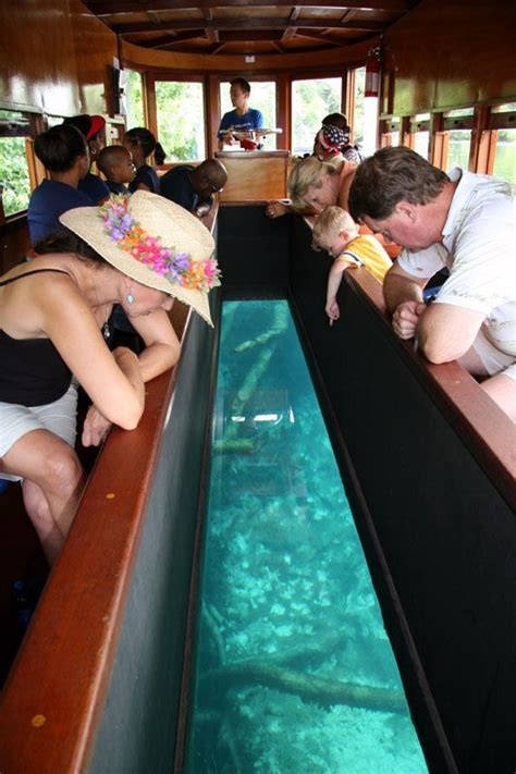 glass bottom boat san marcos texas san marcos tx glass bottom boat not much marine life to