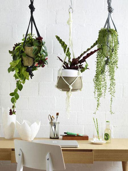 pflanzen deko frische deko ideen mit pflanzen f 252 r drinnen und drau 223 en