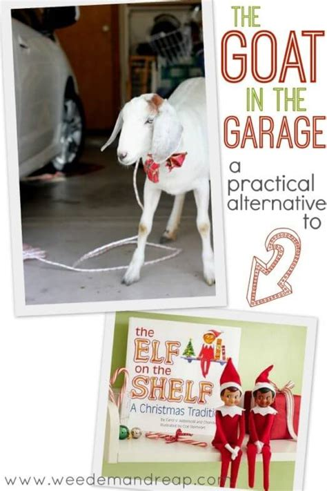 Alternative To On The Shelf by The Goat In The Garage A Practical Alternative To The