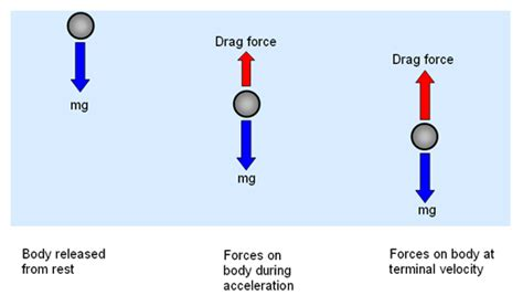 definition of water resistance in physics episode 209 drag air resistance terminal velocity