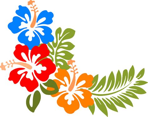 hibiscus pattern png hibiscus hawaii flowers 183 free vector graphic on pixabay